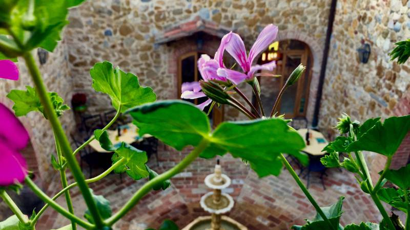 locandavesuna-siena-courtyard3
